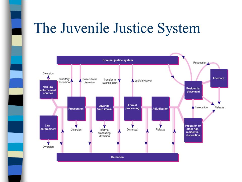 juvenile system Juvenile justice system during each interim year, the bulletins in the national report series provide access to the latest juveniles in court melissa sickmund.