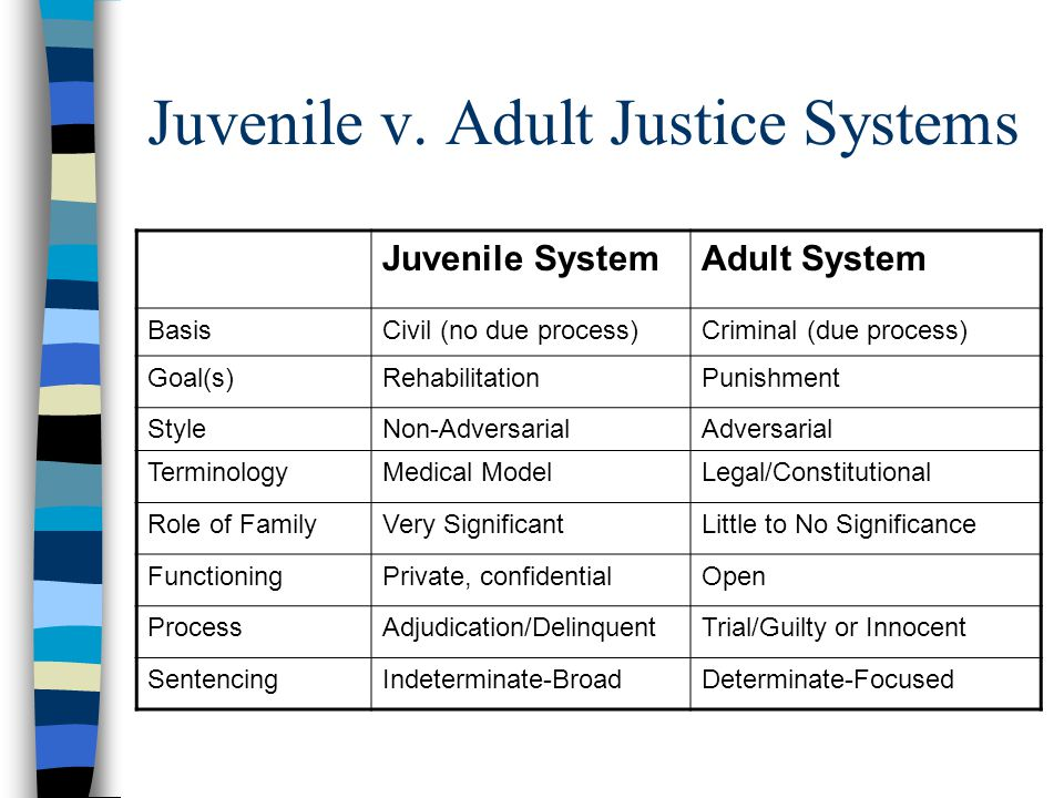 What is Juvenile Rehabilitation?