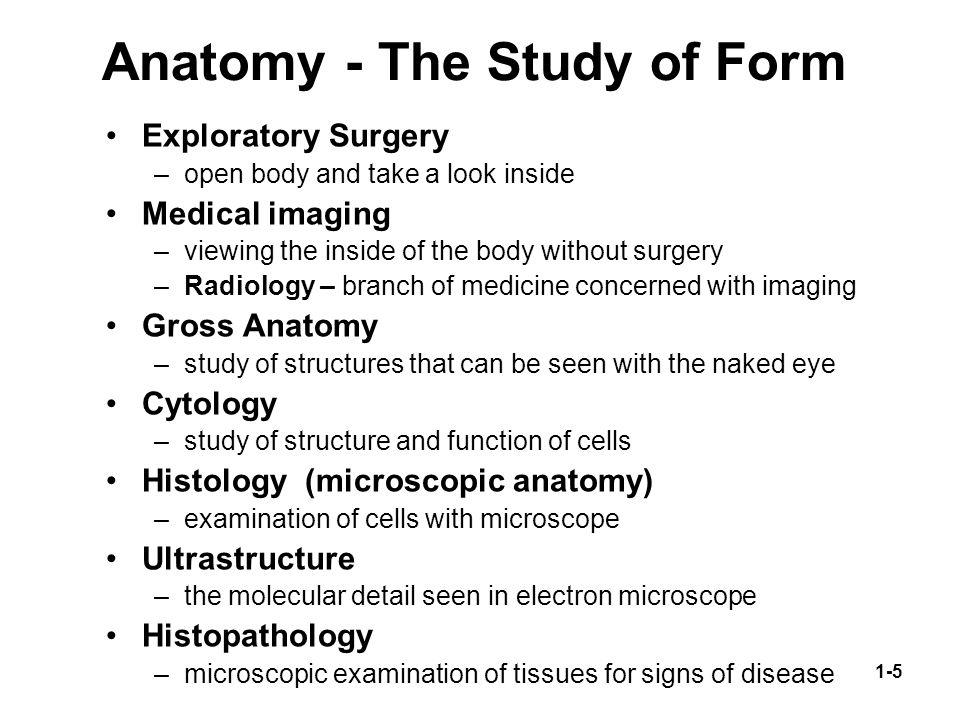 Catatan Kuliah: Branches of Medicine | Rara Niken FA's Blog