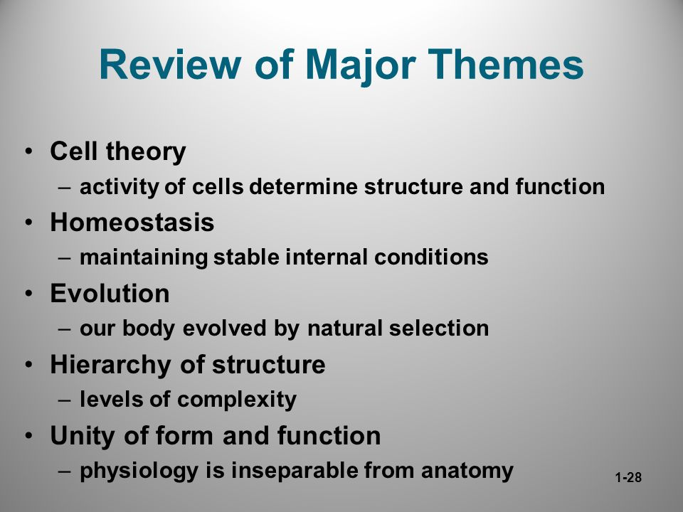 structure and the major themes of Teaching theme -  ccrar2 – determine central ideas or themes of a text and  analyze their development summarize the key supporting details and ideas.