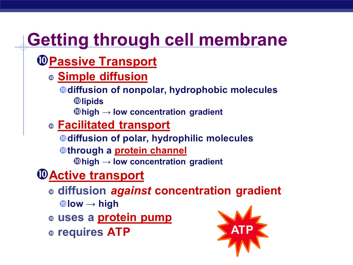 cell membrane essay Cell structure essay examples 9 total results an overview of the cellular structure and function 566 words 1 page a brief introduction to the cell structure and function 564 words 1 page an analysis of the cell membrane in structures of the cell 229 words 1 page an overview of the animal cells in biology 420 words 1 page exploring.