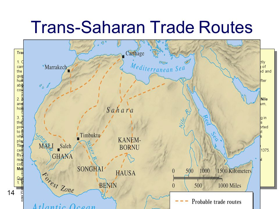 the differences and similarities between the trans atlantic and trans saharan slave trade on the wes The kingdom of dahomey among the fon peoples had a different response to the europeans it emerged around abomey in the seventeenth century by the 1720s, access to firearms led to the formation of an autocratic regime based on trading slaves.
