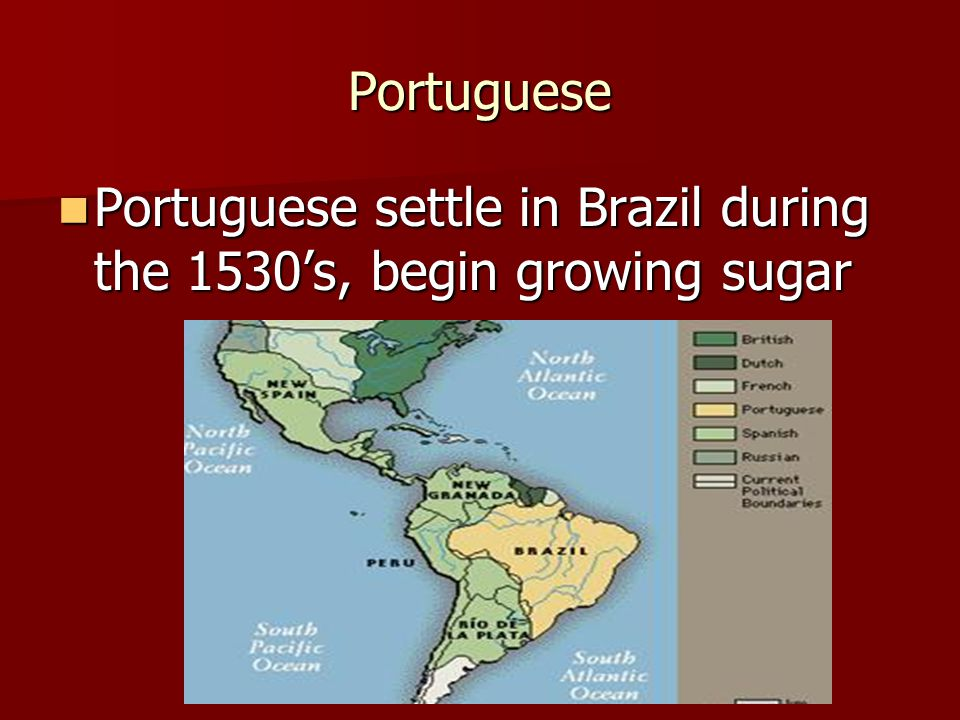 Portuguese Portuguese settle in Brazil during the 1530's, begin growing sugar