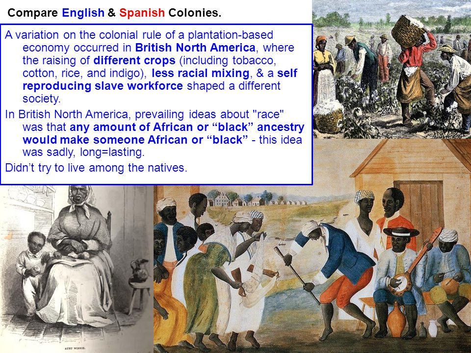 a comparison of spanish and british colonization in america A comparison and contrast of the different early  colonial differences  the formation of the british colonies in north america.