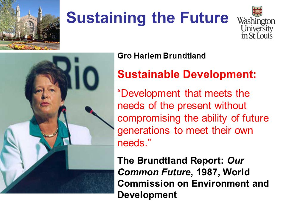 The Brundtland Report 'Our Common Future'