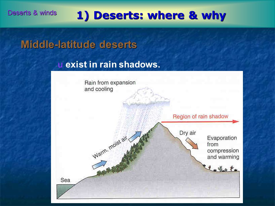 THE INDIAN MONSOON The climate of India is strongly influenced by ...