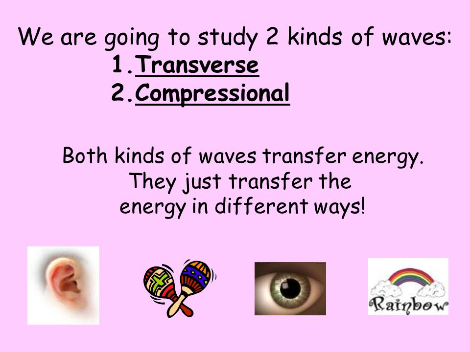 We are going to study 2 kinds of waves: Transverse Compressional