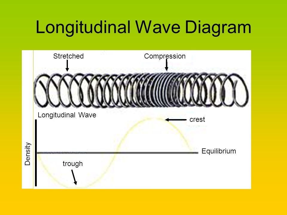 Longitudinal Wave Diagram