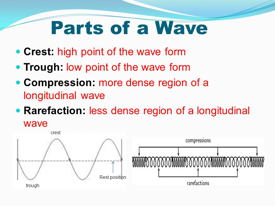 Parts of a Wave Crest: high point of the wave form