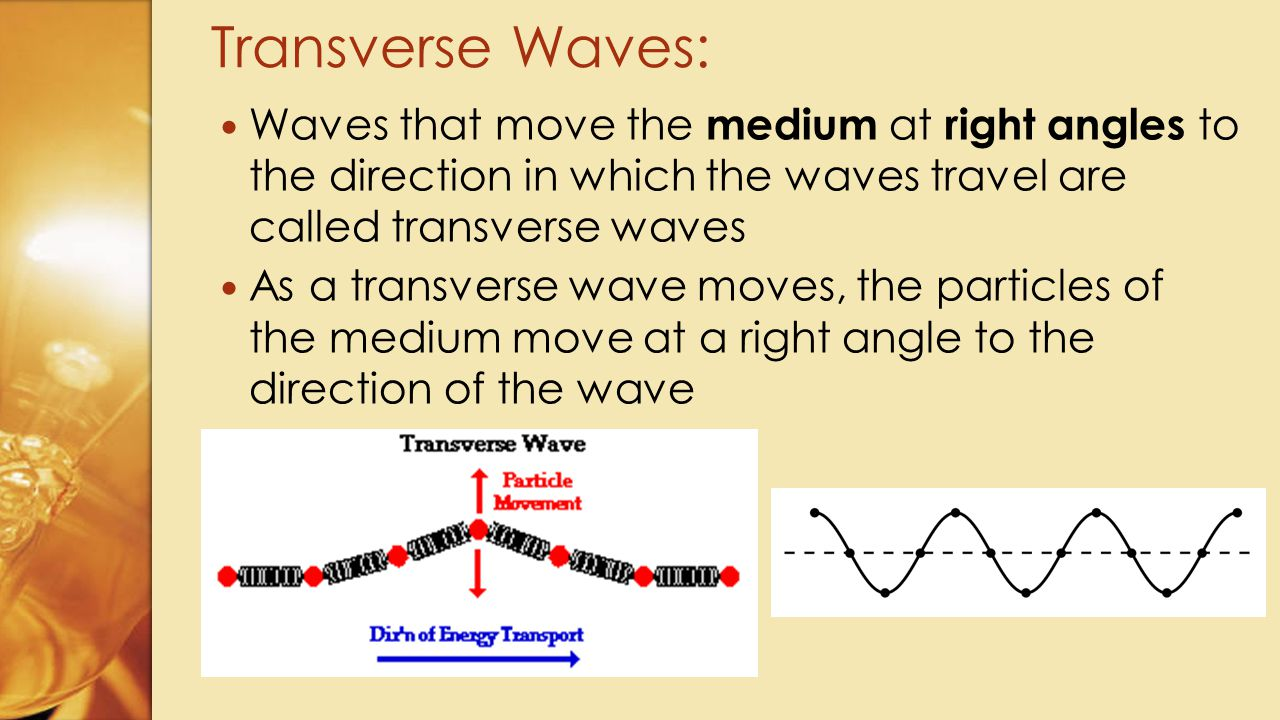 Transverse Waves: Waves that move the medium at right angles to the direction in which the waves travel are called transverse waves.
