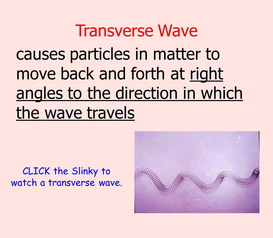 CLICK the Slinky to watch a transverse wave.