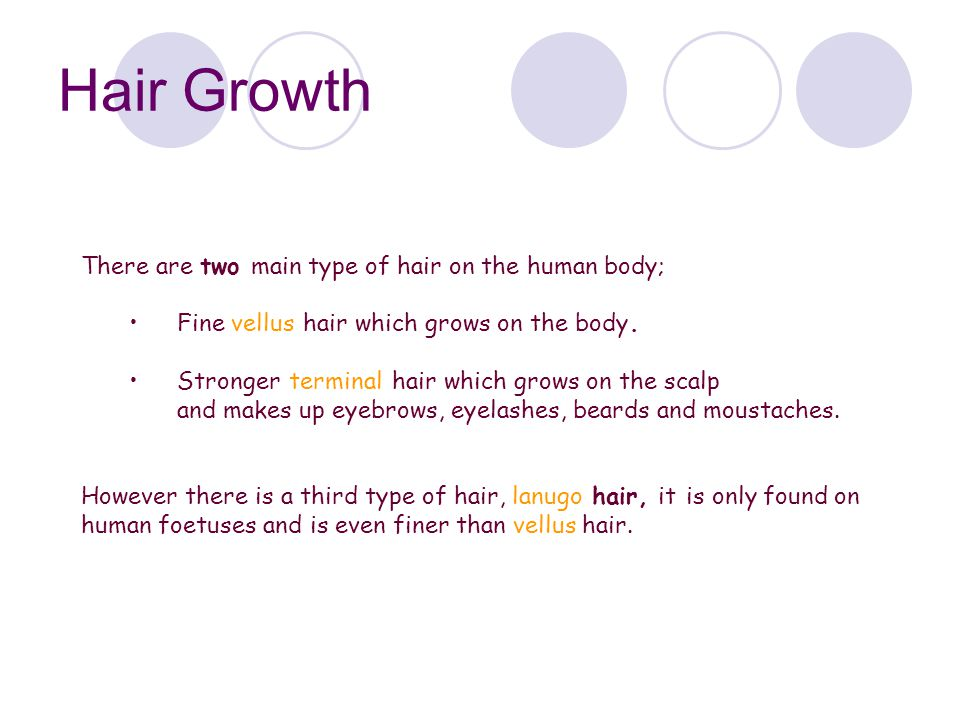 Hair Growth There are two main type of hair on the human body;