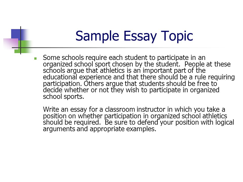 free on the net essay experiment taking