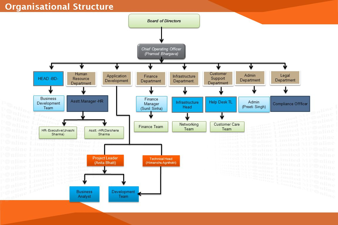 organisational structure of tata consultancy services