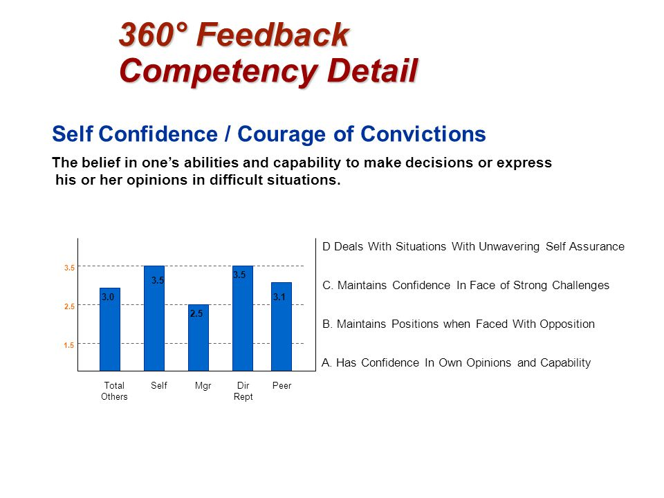 360° Feedback Competency Detail