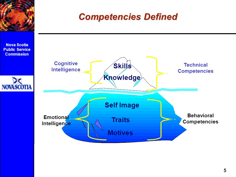 Competencies Defined Skills Knowledge Self Image Traits Motives