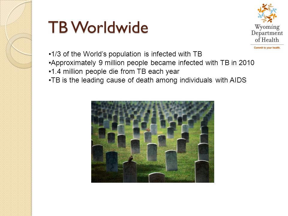 TB Worldwide 1/3 of the World's population is infected with TB