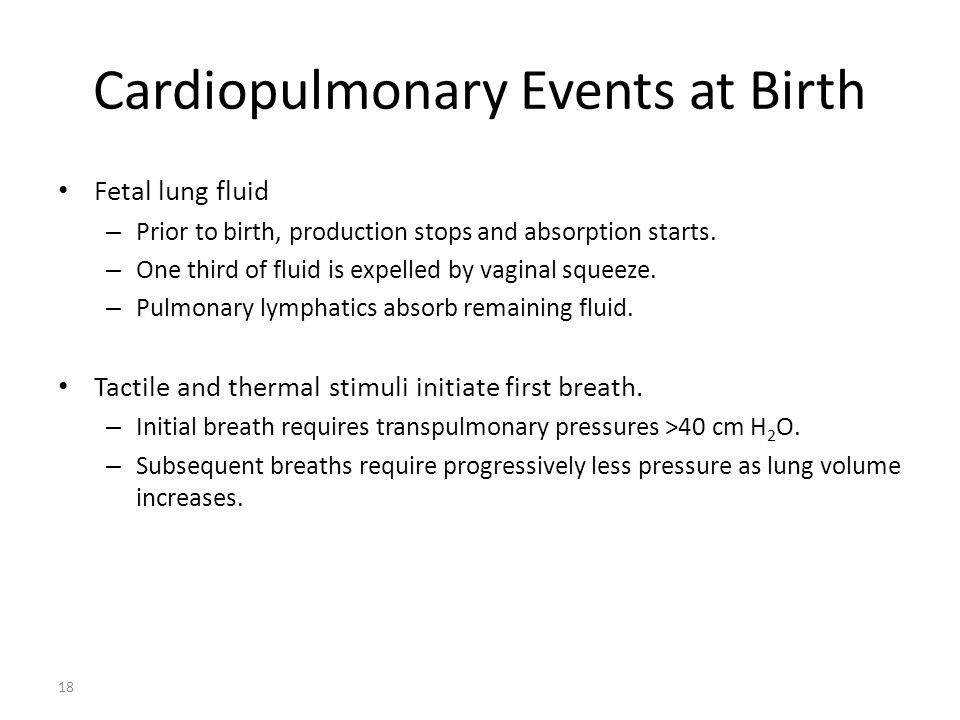 Cardiopulmonary Events at Birth