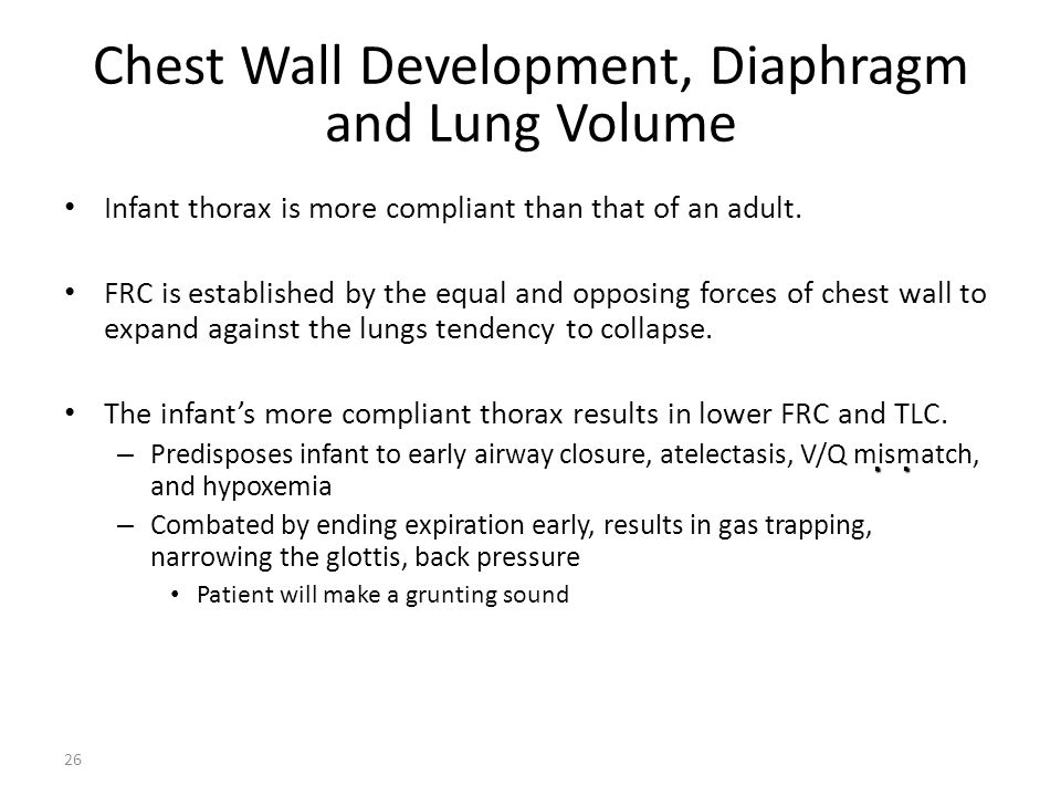 Chest Wall Development, Diaphragm and Lung Volume