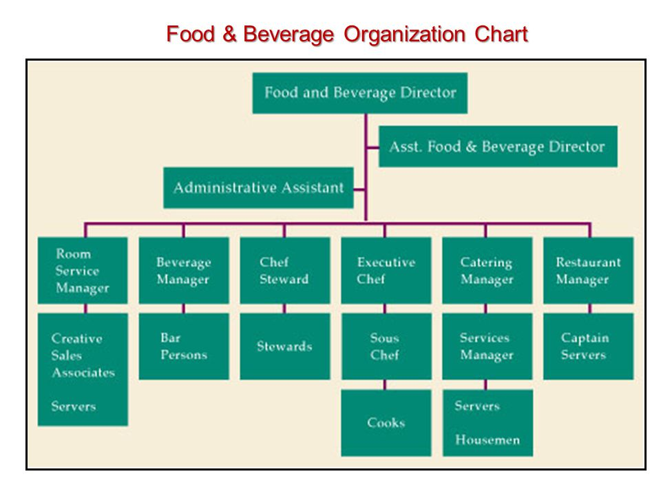 organization chart for food and beverages: Organization chart for food and beverages food beverage
