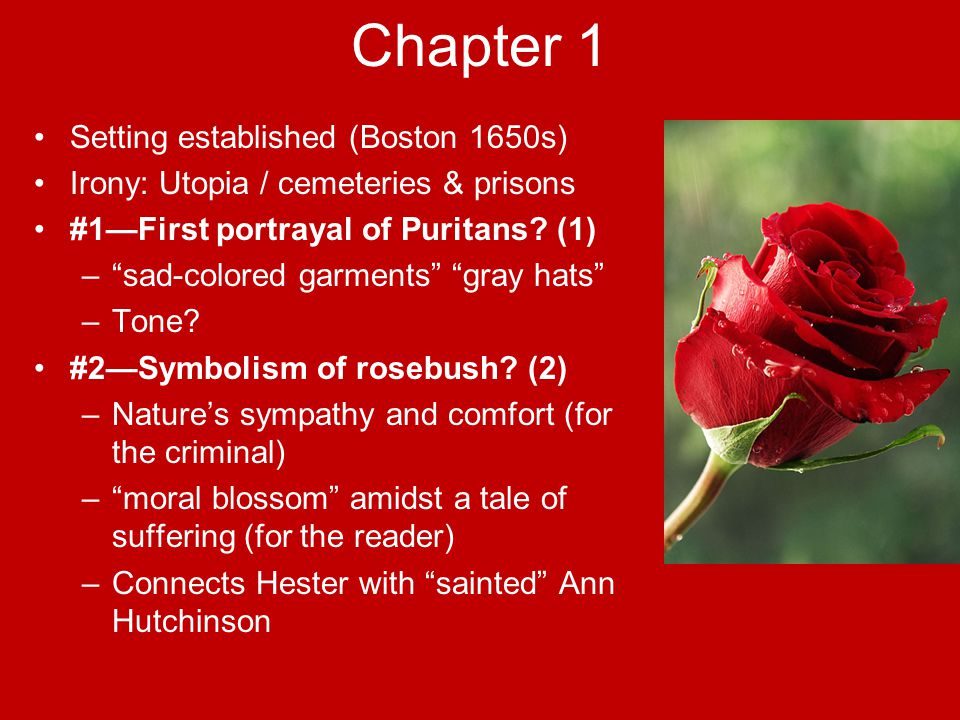 an analysis of anne hutchinson references in the scarlet letter by nathaniel hawthorne