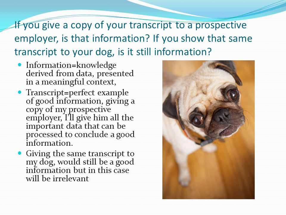 how to get a copy of your transcript