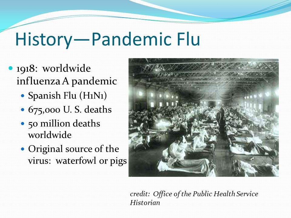 asian flu deaths