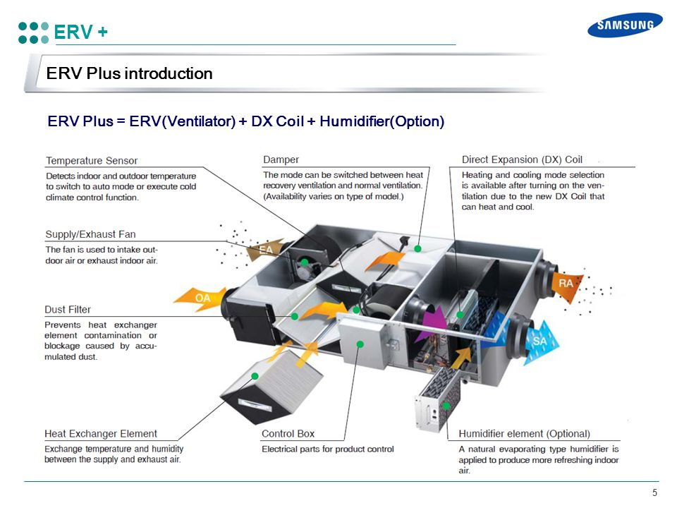 ERV + ERV Plus introduction