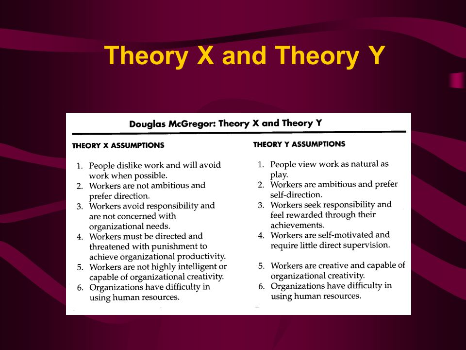 explain theory x and theory y