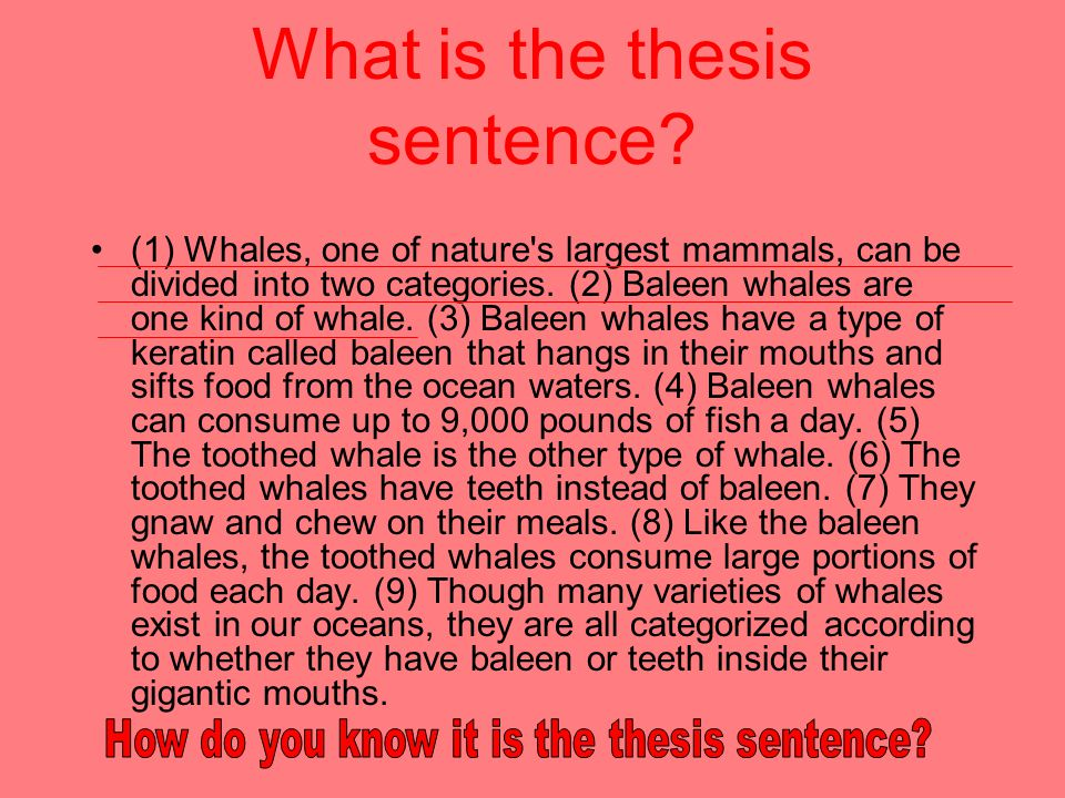 write good thesis sentence All writers of essays need to know how to write a thesis statement unfortunately, this proves difficult for inexperienced writers so teaching thesis statements should be the first step in teaching students how to write essays.