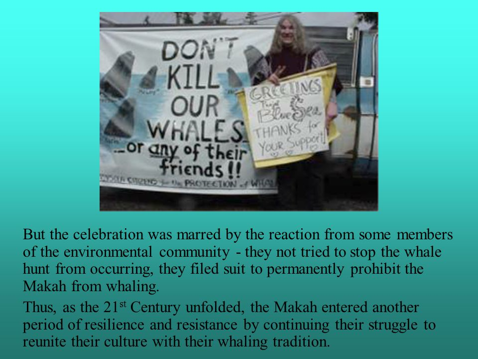 an analysis of the makah indian whaling as an environmental injustice Whaling is the hunting of whales for their  anti-whaling countries and environmental groups oppose  the makah tribe in washington state also.