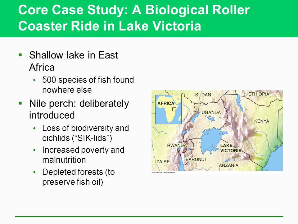 lake victoria case in study Final project 2013 role of beach management units in implementing fisheries policy: a case study of two bmus in lake victoria, tanzania joseph luomba.