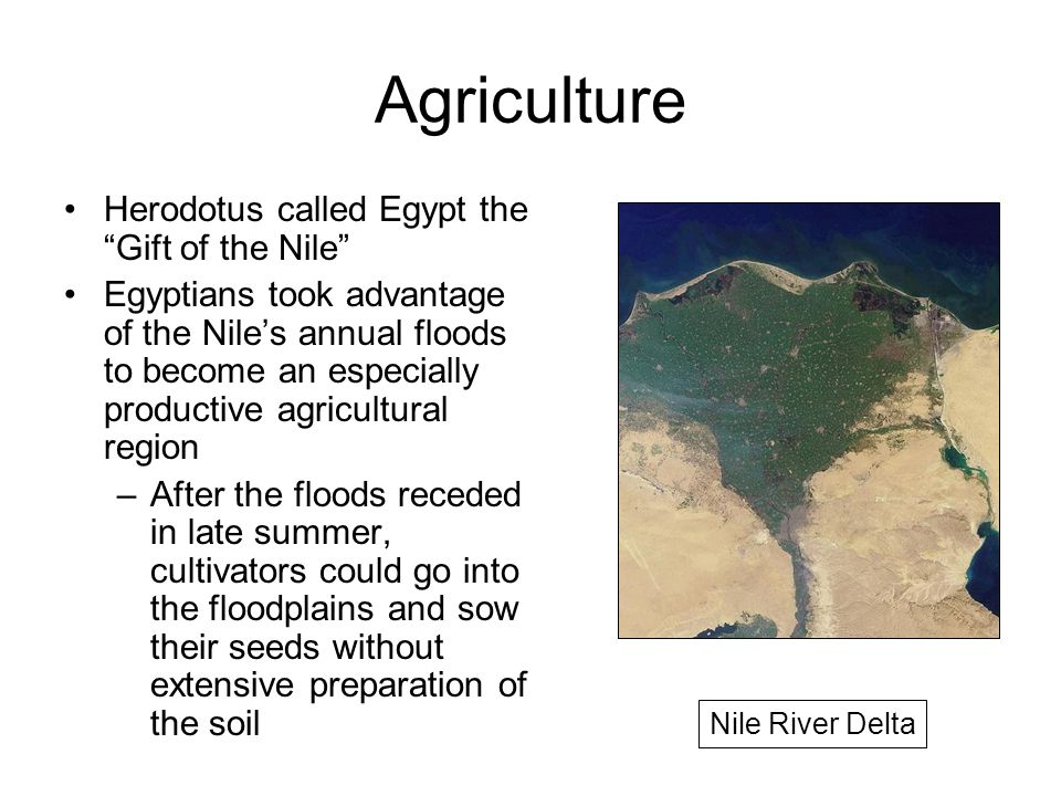 advantages of agriculture in early river Historians call this settled farming during the neolithic age the agricultural  revolution the word  farming soon spread along the nile river and into other  regions in africa  the growth of communities did not always bring benefits in  some.