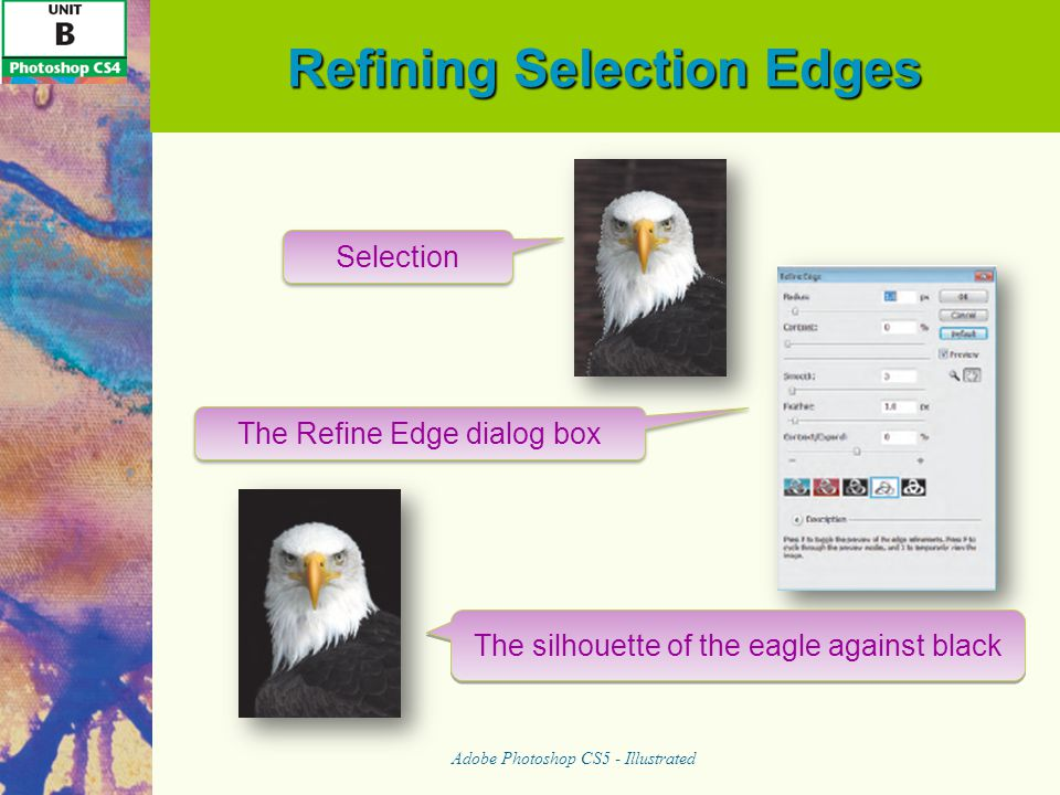 Refining Selection Edges