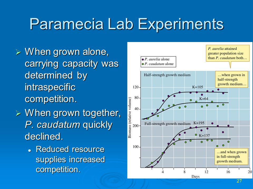 carrying capacity and paramecium aurelia population He showed the coexistence of paramecium caudatum with a potentially allelopathic species, paramecium bursaria 2 although bacterial densities at c striatum carrying capacity are significantly lower than that of p bursaria, results show coexistence, at least until the end of the experiment (day 49) (fig.