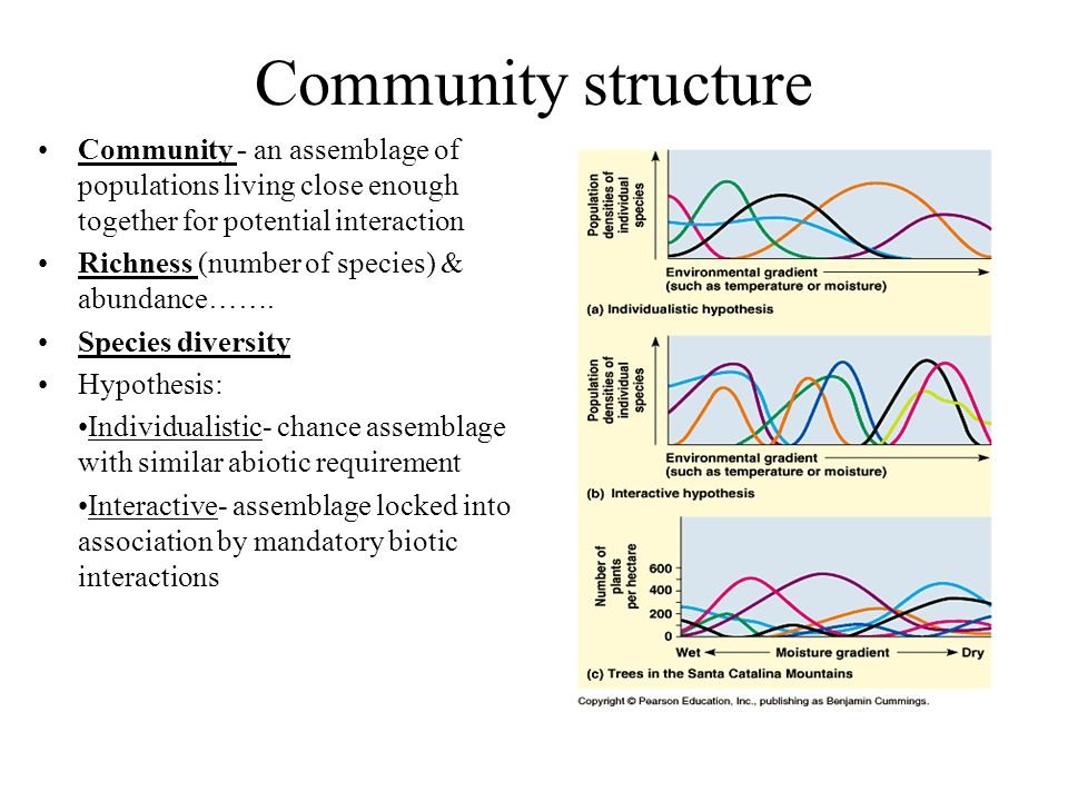 Chapter 3 Communities And Biomes Reinforcement And Study