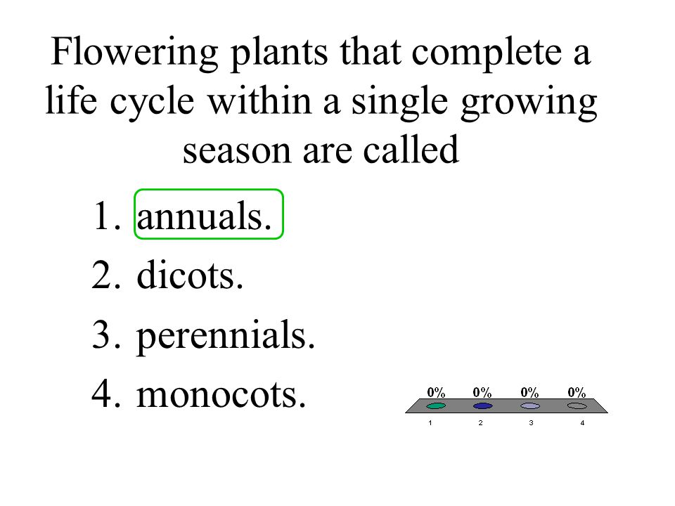 Flowering plants that complete a life cycle within a single growing season are called