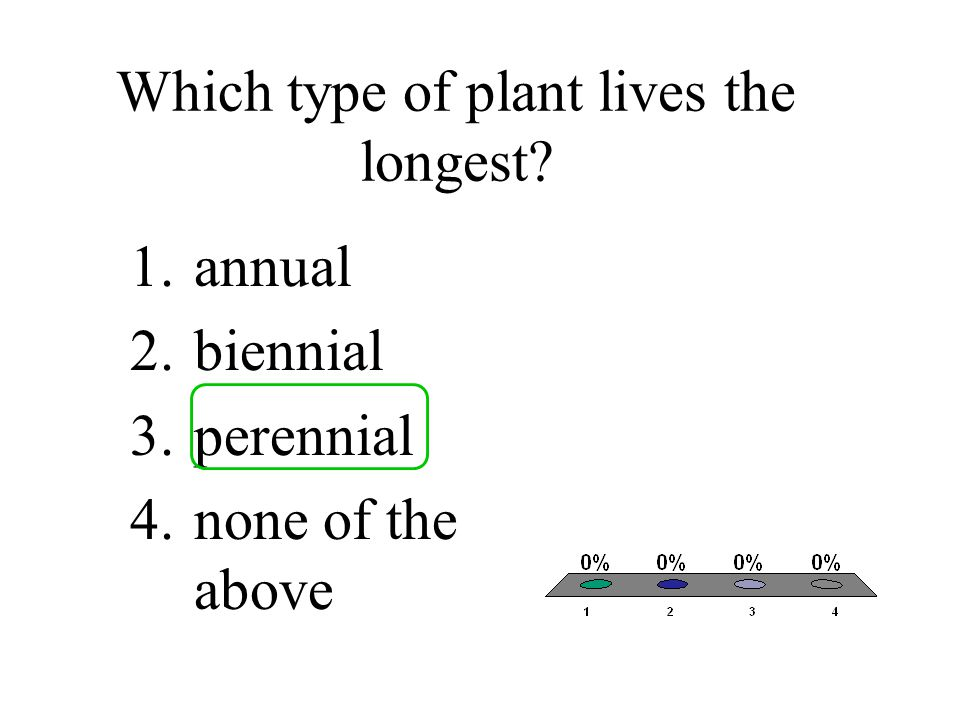 Which type of plant lives the longest