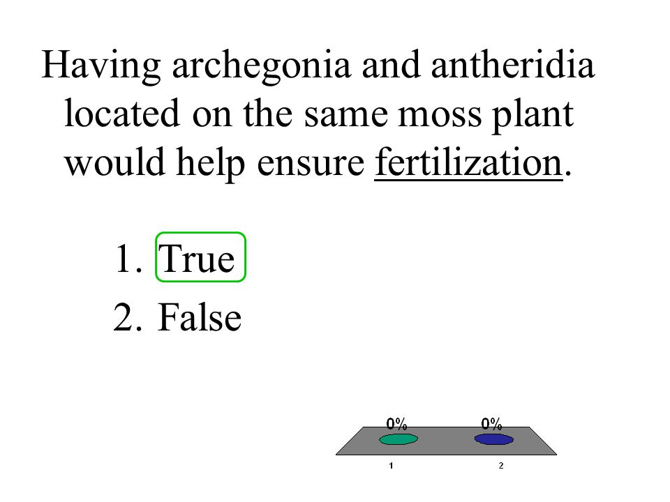 Having archegonia and antheridia located on the same moss plant would help ensure fertilization.