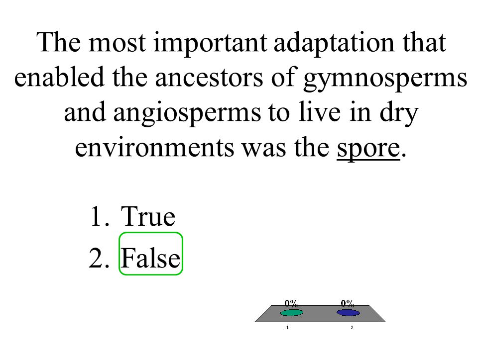 The most important adaptation that enabled the ancestors of gymnosperms and angiosperms to live in dry environments was the spore.