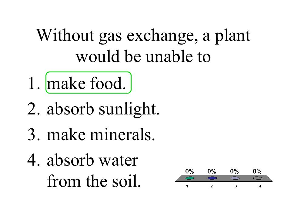 Without gas exchange, a plant would be unable to