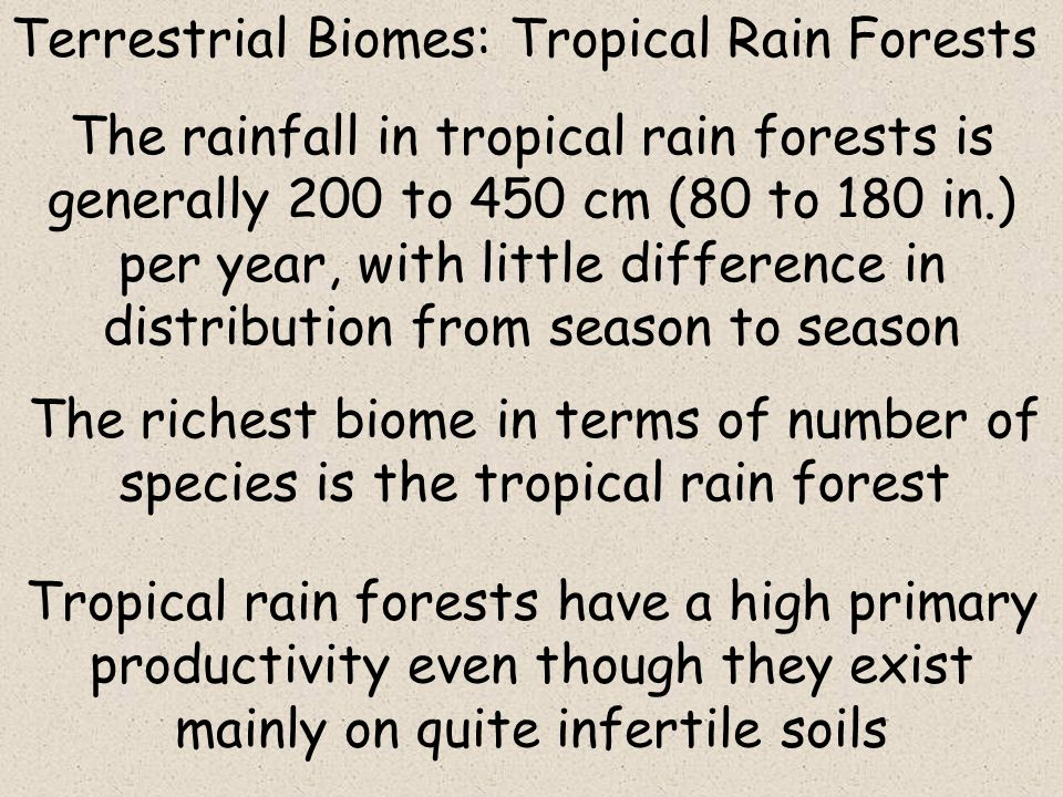 the importance of tropical dry and rain forests forests in regions with high rainfall Forests: tropical rain  forests are eventually replaced by tropical dry forests  the regions occupied by tropical rain forests today will.