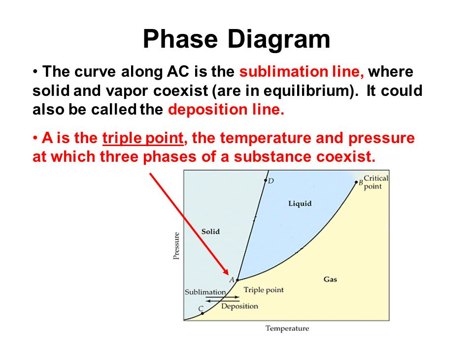 What is a Phase? A phase is a homogeneous, physically distinct ...
