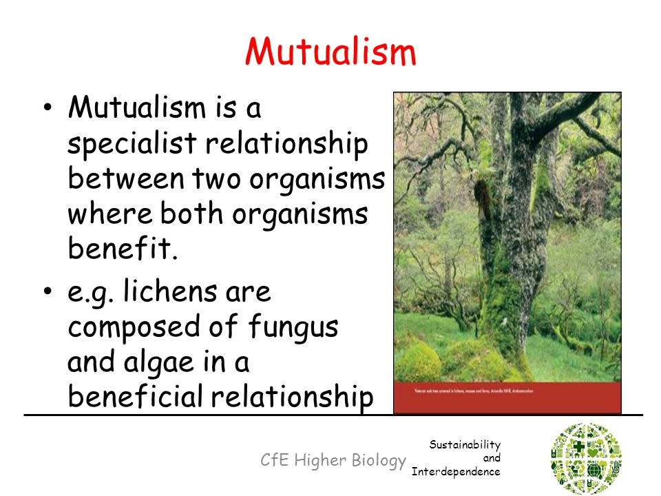 synonym mutually beneficial relationship between 2
