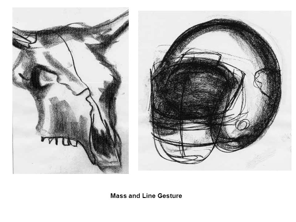 Line Drawing Vs Mass Drawing : Drawing gestures contours ppt video online download