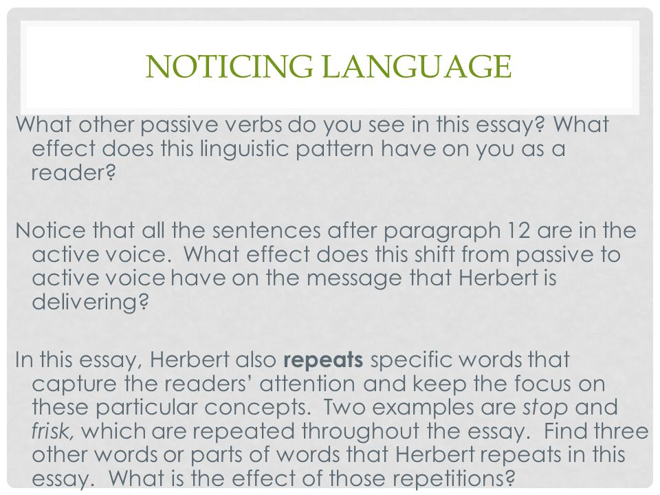 what does a reader find in the body paragraph of an essay