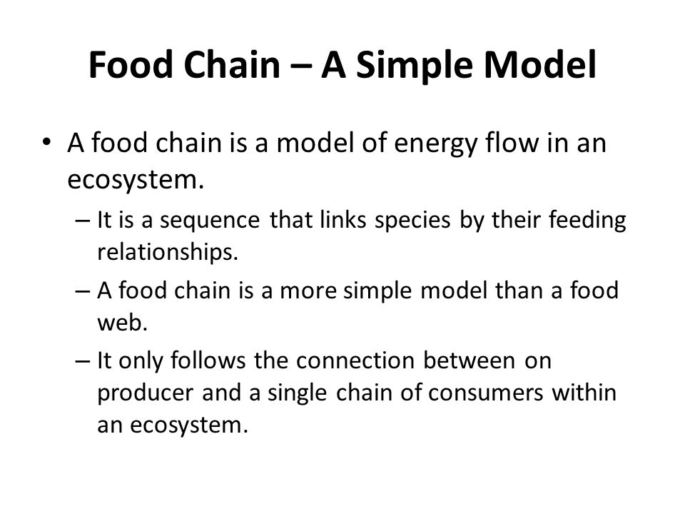 Food Chains, Food Webs, and Energy Pyramids - ppt video ...