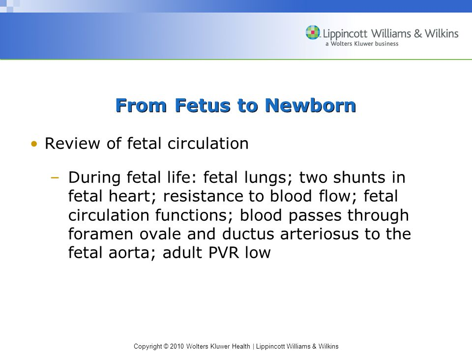 From Fetus to Newborn Review of fetal circulation