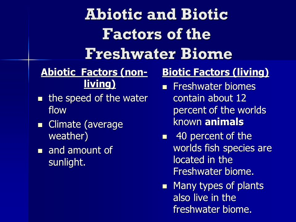 an paper on types of freshwater biomes The freshwater biome by lauren finnis the freshwater biome is a complex biome that can be found all over the world there are two major types of freshwater biomes.