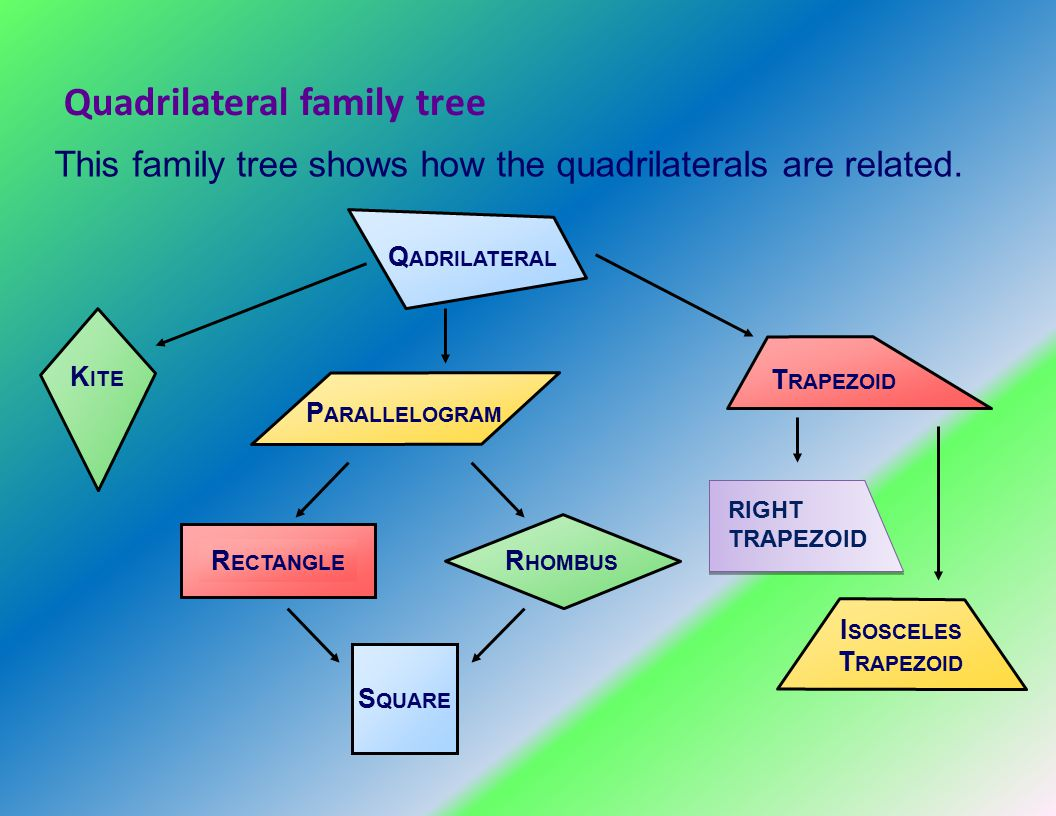 Warm up what is the definition of congruent ppt video online quadrilateral family tree ccuart Gallery